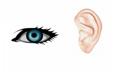Zraková a sluchová oblast – proč je tolik důležitá pro správný nácvik čtení, psaní a počítání?